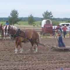 Rocky Lane Farmers' Day Celebration